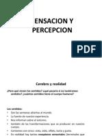 CLASE 9 - Sensacion y Percepcion
