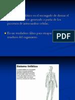 8._Sistema_inmune
