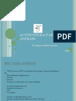 Acupuntura Para Animais