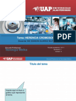 05 HERENCIA CROMOSOMICA.ppt