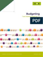 Cig Tg Budgeting Mar08