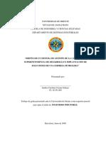 TESIS.II009C26.pdf