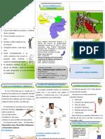 95297119 Triptico de Malaria Nov10