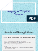 Imaging of Tropical Disease