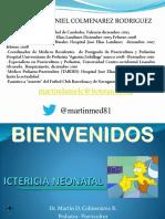 Ictericia Neonatal Hjel Octb 2014 - Copia