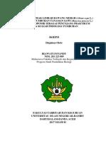 skripsi pdf.pdf