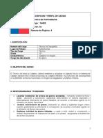 DESCRIPCION-Y-PERFIL-DE-CARGO-TECNICO-EN-TOPOGRAFIA.doc