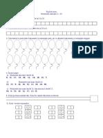 Fisa Completa Mem PDF