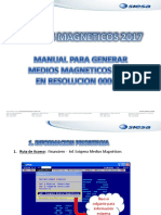 MANUAL MEDIOS MAGNETICOS DIAN 2017 (1).pdf