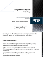 (GUS 1) Kidney and Urinary Tract Pathology