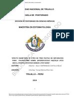 Tesis MaestríaX - Sally Esperanza Castillo Blaz(1)