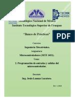 Formato de Practicas, Micro.