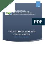 CALABARZON Seaweeds VCA.docx