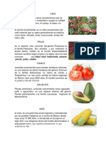 FRUTOS DE GUAEMALA.docx