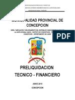 168227134-1-Informe-de-Pre-Liquidacion-Concepcion.doc