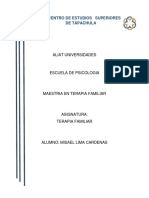 COMPRESION DE CLASE TERAPIA FAMILIAR.docx