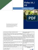 16 Ficha - Plantas y Follaje