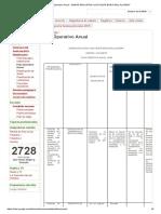 Plan Operativo Anual - Unidad Educativa _luis Felipe Borja Del Alcázar