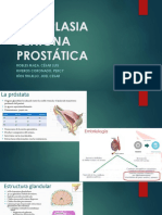 Hiperplasia Benigna Prostática Limpio
