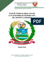 PLAN DE TRABAJO ANUAL 2019 PDC.docx