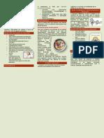 Folder Dislaia e Dislexia