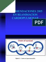 03.-Recomendaciones_en_RCP_2005