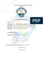 proyecto inversion.docx