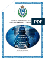 DELITOS INFORMATICOS evelia.docx