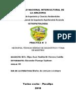 INFORME 3 ICTIO.docx