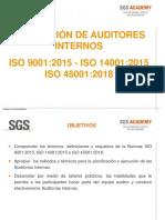 Auditor Interno HSEQ (2018).pdf