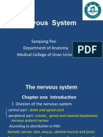 NS introduction spinal cord(1).ppt