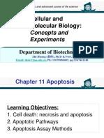 Chapter 11-Apoptosis.pptx