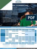 Plan Ingenieria Comercial 2019