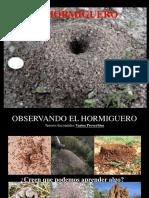 5.+El+hormiguero