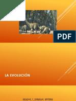 EVOLUCION.pptx