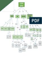 Mapa_Conceptual_.pptx