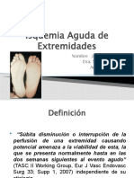 Seminario Isquemia Aguda de Extremidades HCV 2010