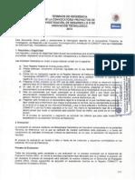 Términos de Referencia Convocatoria 2010 Programa Estímulos a la Innovación