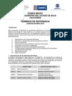 Términos de Referencia Convocatoria 2010 Fondos Mixtos