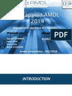 AMDL 2014.ppt