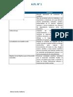 API 1 DE MEDIACION COMUNITARIA.docx