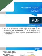 Final Eye Anatomy