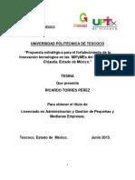 Tesina_RICARDO.docx