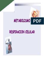 13)Respiracion Celular [Sólo Lectura]