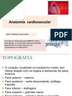 Anatomia Do Coração (1)