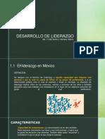 CAP. 1  DESARROLLO DE LIDERAZGO.pptx