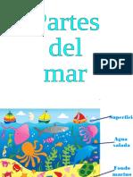 Presentacion de los tipos de animales marinos.pdf