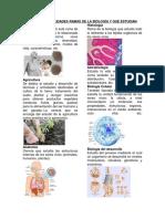 LAS 50 ESPECIALIDADES RAMAS DE LA BIOLOGÍA.docx