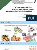 Apresentação Tese 14.08.18 -final.pdf
