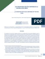 Concreto Hidráulico Modificado con Sílice.pdf